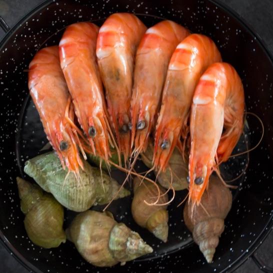 Bistrot du Pecheur - crevettes